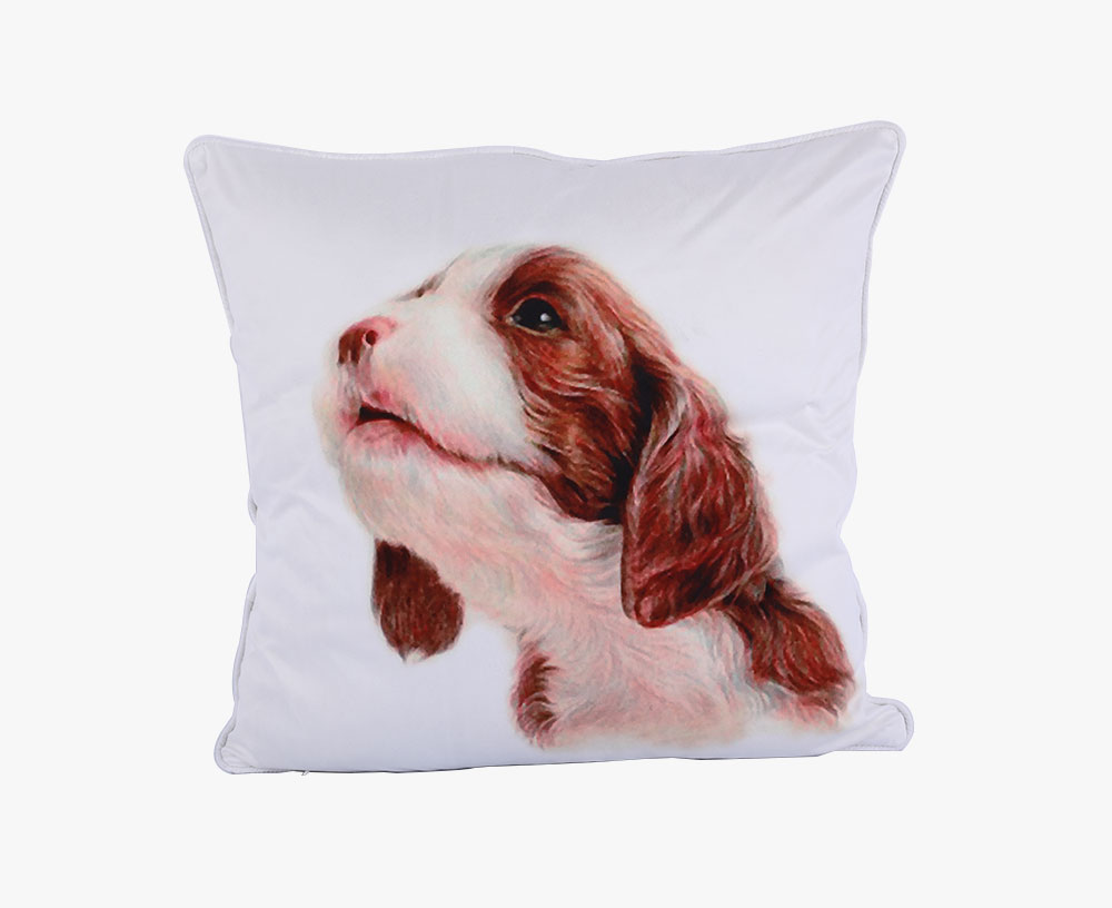 Color Printing Microfibre Cushion
